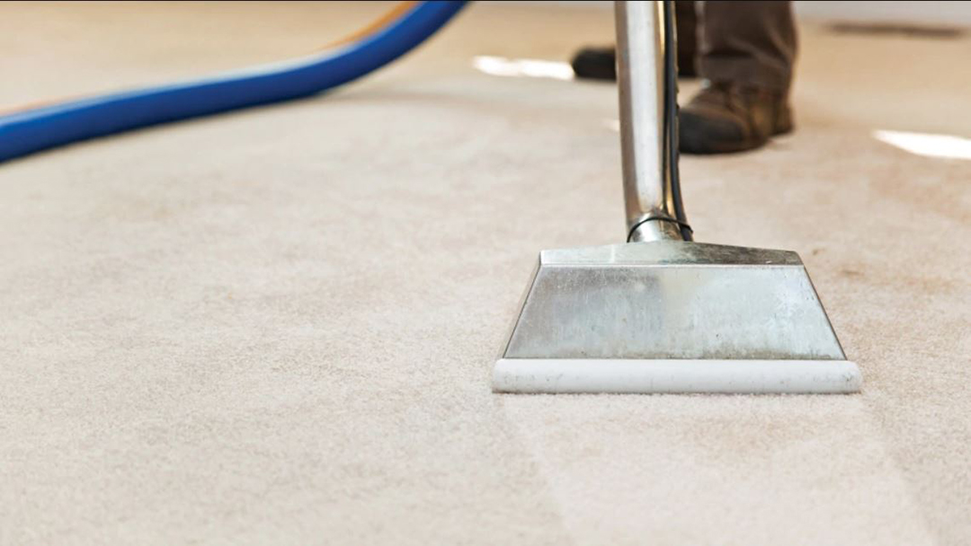 Northern Beaches Commercial carpet cleaning