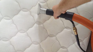 Mattress Cleaners Northern Beaches